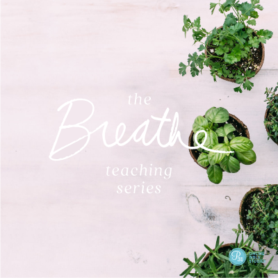 """The next Proverbs 31 Online Bible study is """"Breathe"""" by Priscilla Shirer! Study starts September 4. Learn more and sign up here --> http://www.proverbs31.org/online-bible-studies/  #SabbathMargin #P31OBS"""